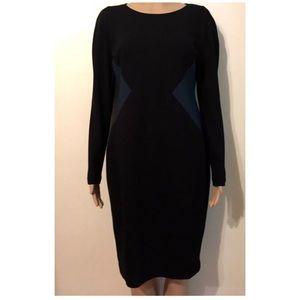 Ann Taylor dress size 6 petite long sleeve New